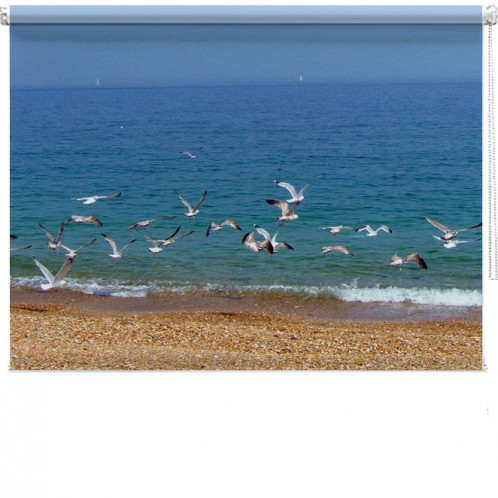 Seagull Beach Printed Bind Picture Printed Blinds At Artylicious