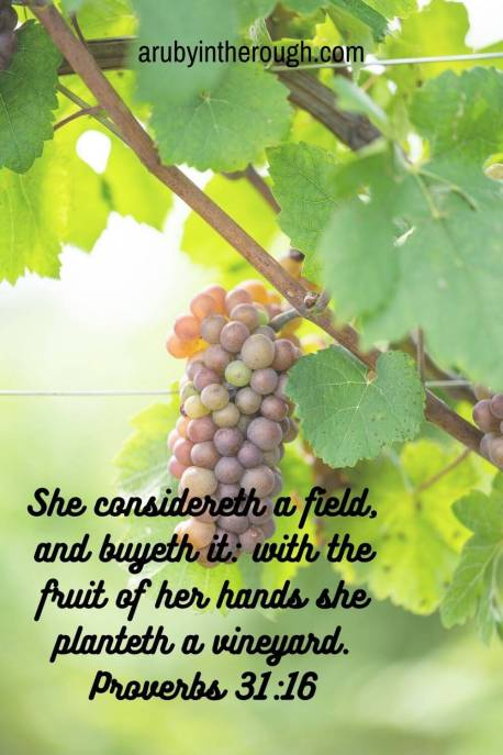 Grapes with Proverbs 31:18 verse