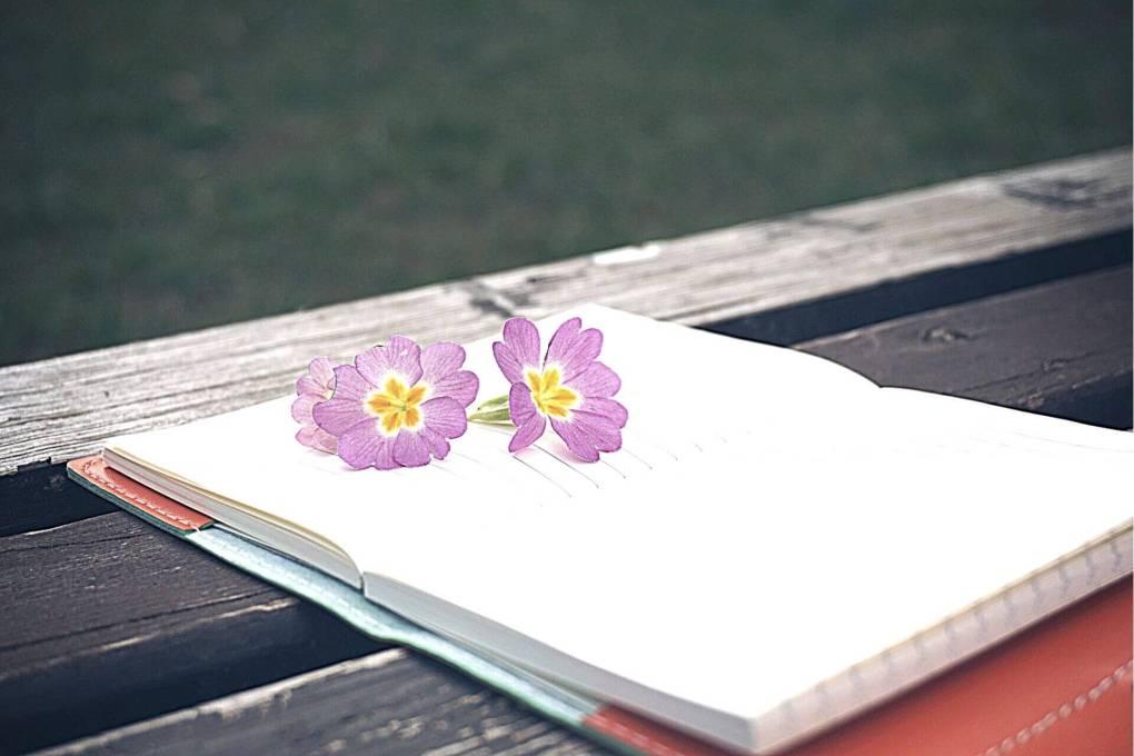 Open notebook with pretty purple flowers lying on it