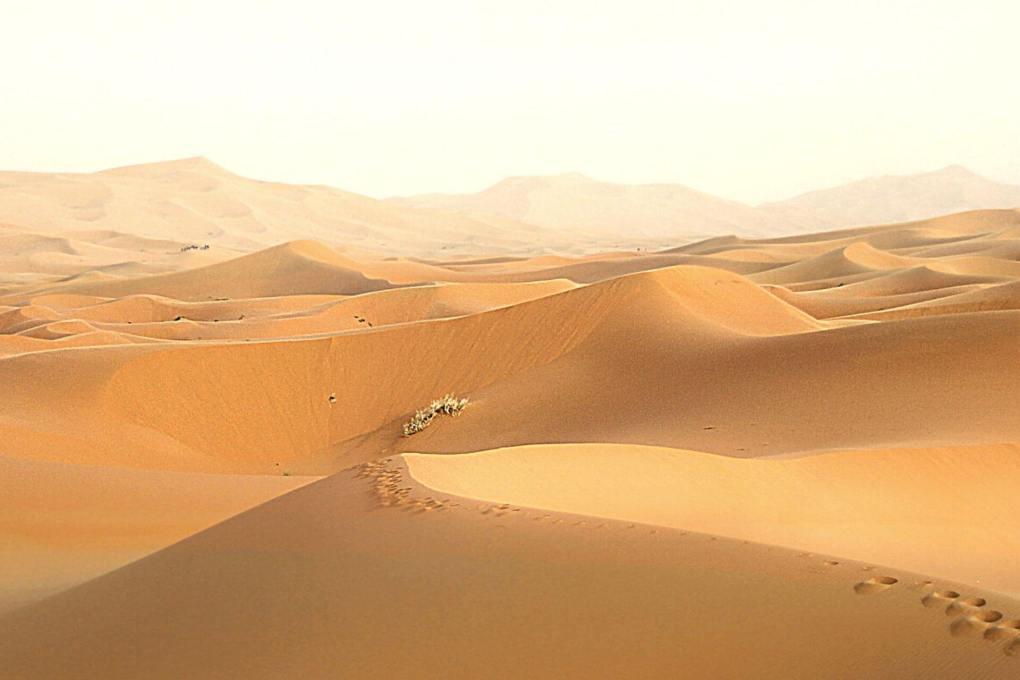 Sand hills in the desert