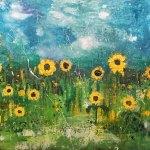 k-evans-daisy-field_orig