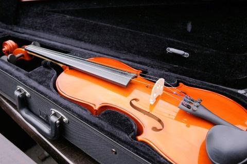 Violin i fodral