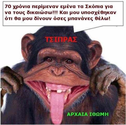 ΓΟΡΙΛΑΣ ΤΣΙΠΡΑΣ