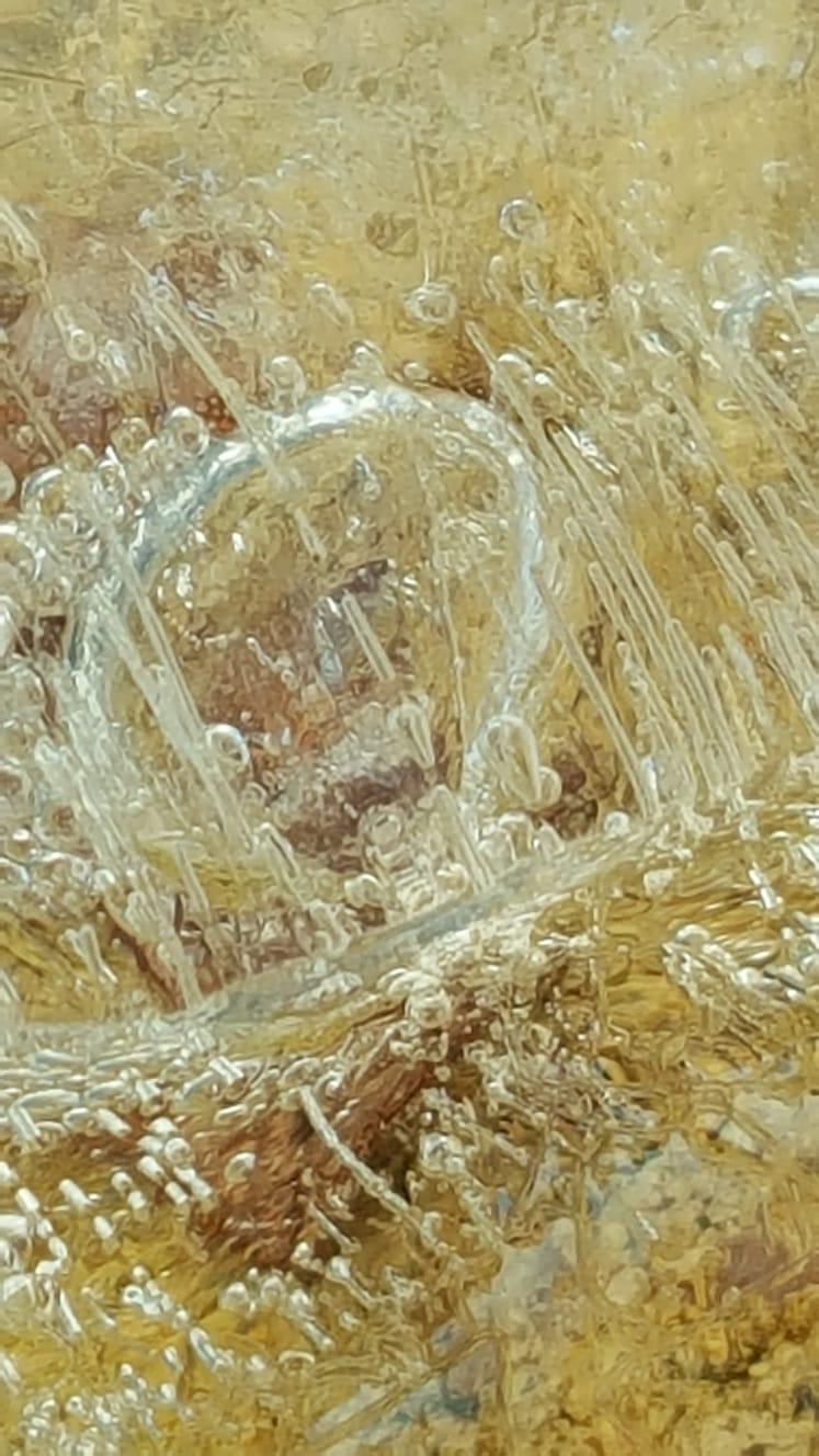 Morceau de Glace au Matin 9