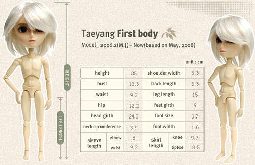 Mensurations corps Taeyang