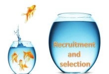 Photo of Are Recruitment Agencies in Ghana the Job Seekers Friend or Foe?