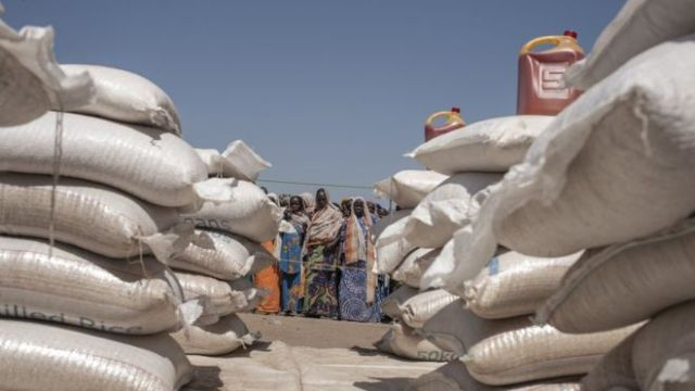 Food for IDPs in Borno State