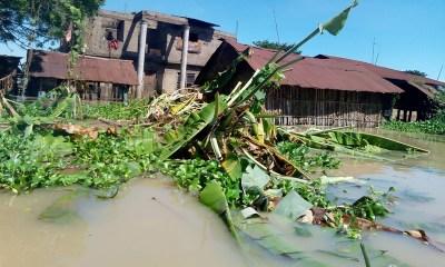 Food Crops Destroyed by Flood in Nigeria