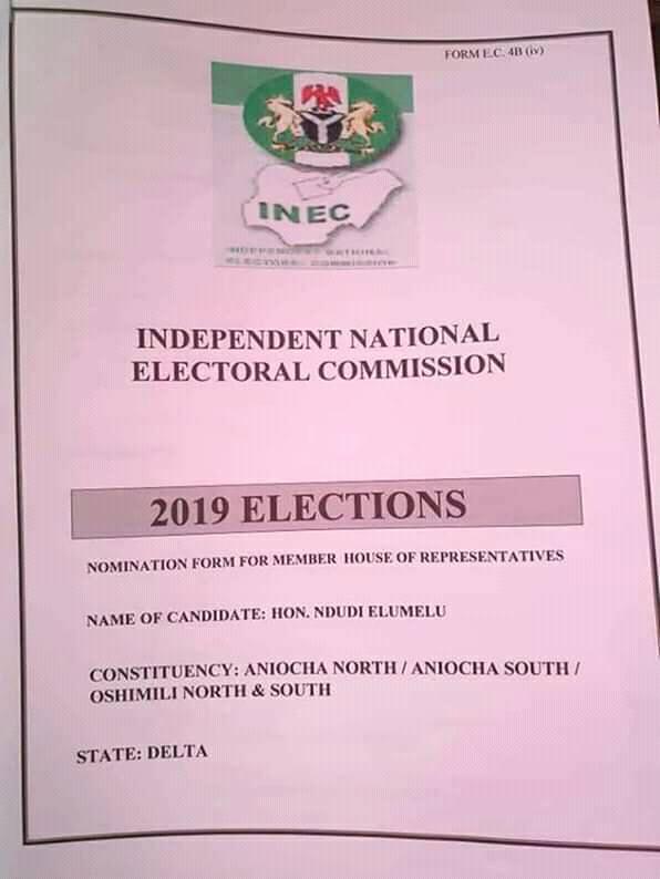 Ndudi Elumelu INEC Nomination Form