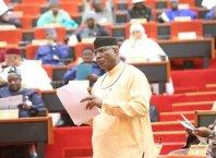 Senator Ovie Omo-Agege, Deputy President of the Senate