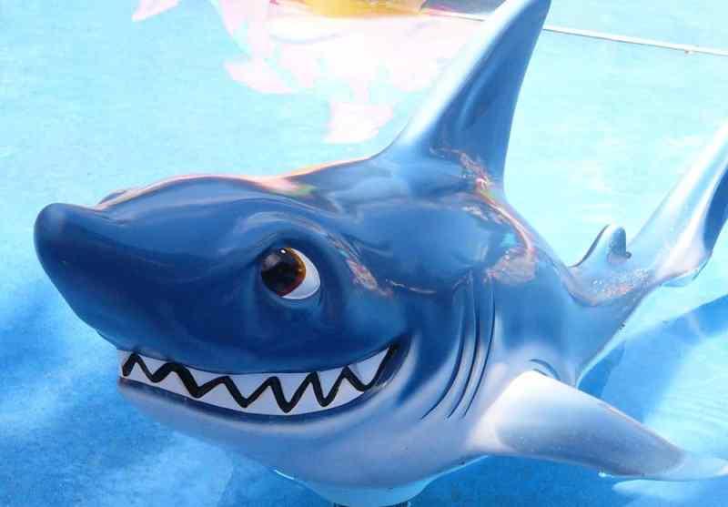 Happy shark