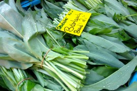 Wild garlic at the market