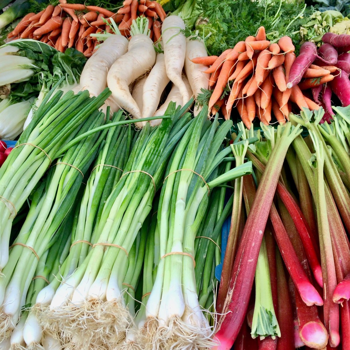 Piles of spring onions, rhubarb, carrots and radishes at the market