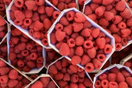 Stacked punnets of fresh raspberries