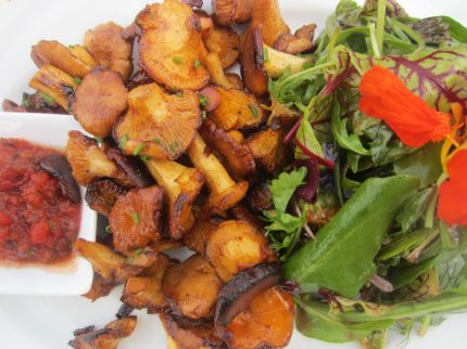 Seasonal salad with chanterelle mushrooms