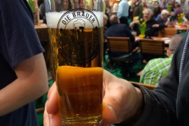 A glass of German beer being held at a tasting
