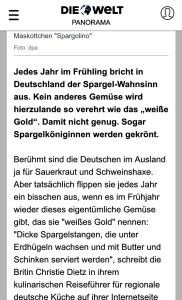 Screengrab of Christie Dietz in Die Welt