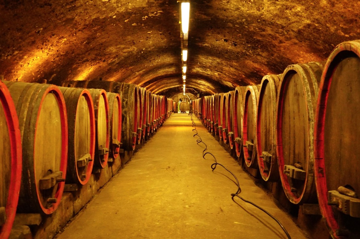 A wine cellar with old barrels in the Nahe region of Germany