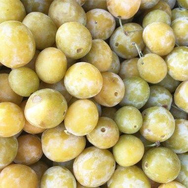 Close up of mirabelle plums from above