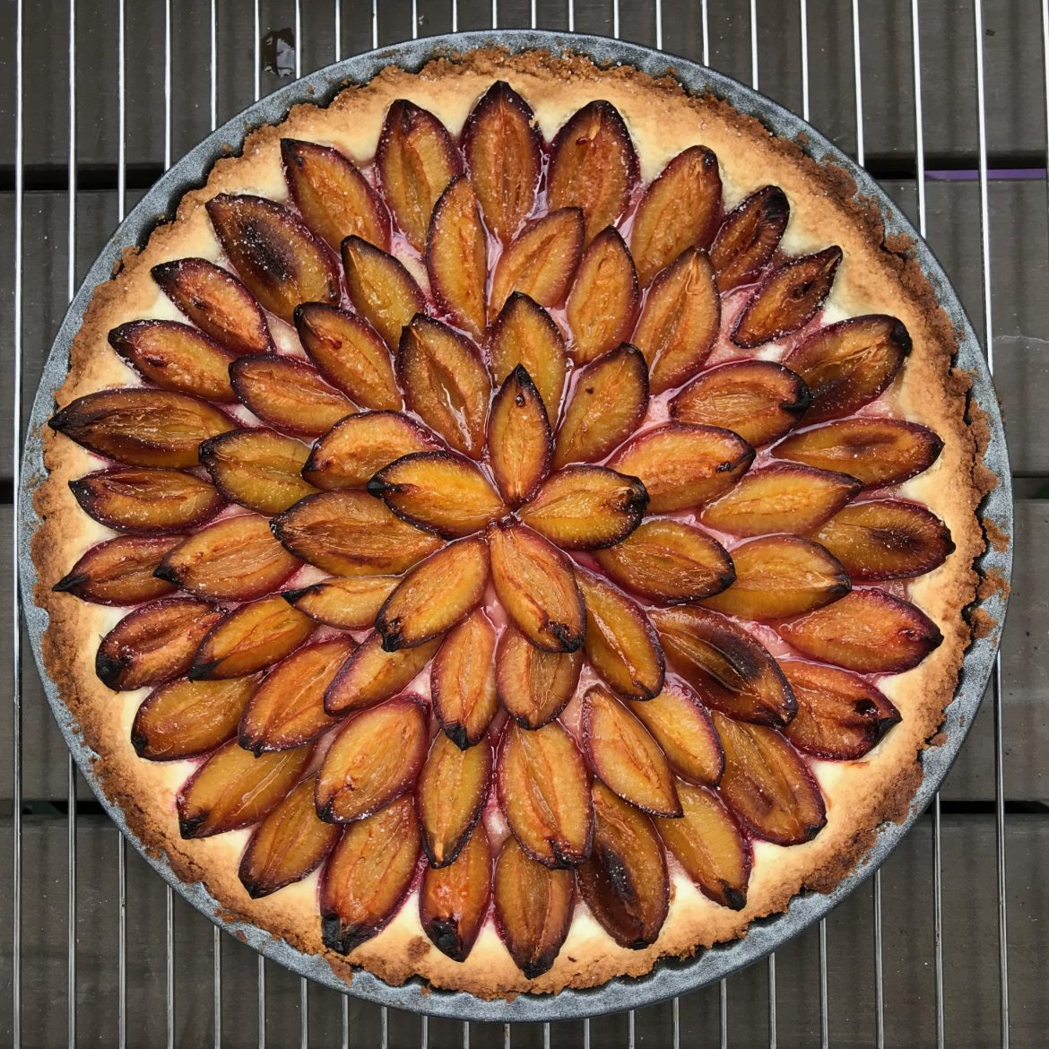 A round German plum cake taken from above