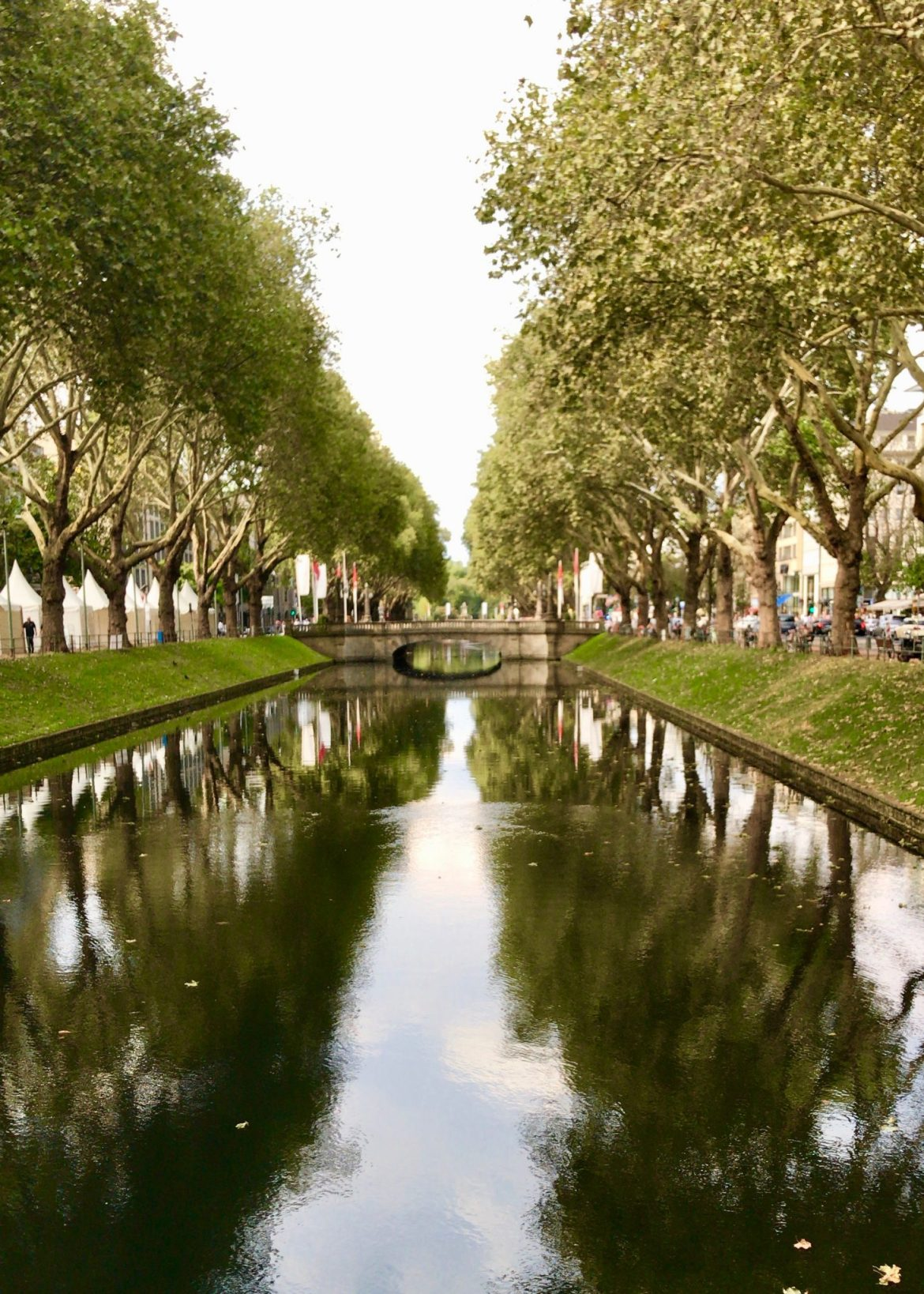 A view of the canal and trees of Düsseldorf's Königsallee