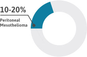Diagram showing that peritoneal mesothelioma accounts for 10 to 20 percent of all mesothelioma cases