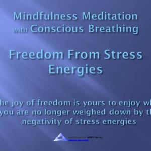 Mindfulness Meditation-Letting Go of Stress Energies@0812