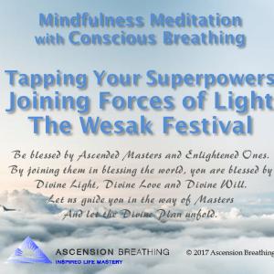 Mindfulness Meditation-Joing Forces of Light, Wesak-051017