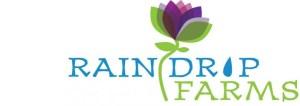 RainDropFarmsLogo 300x106 - 2021 Farm Tours