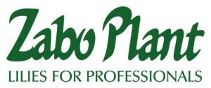 Zabo Plant Logo for button 300x126 - Zabo Plant