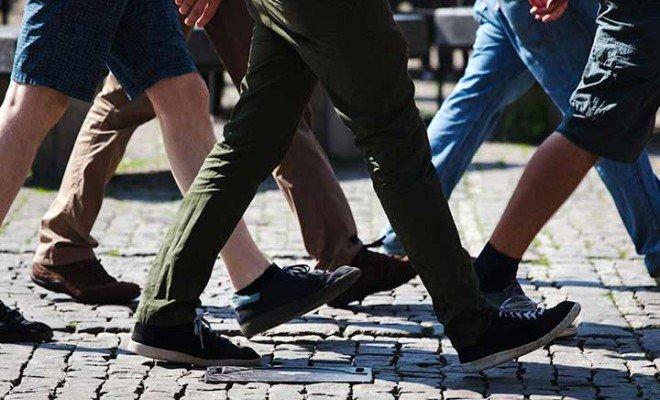 Camminata nel Piceno