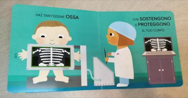 scienza baby - anatomia