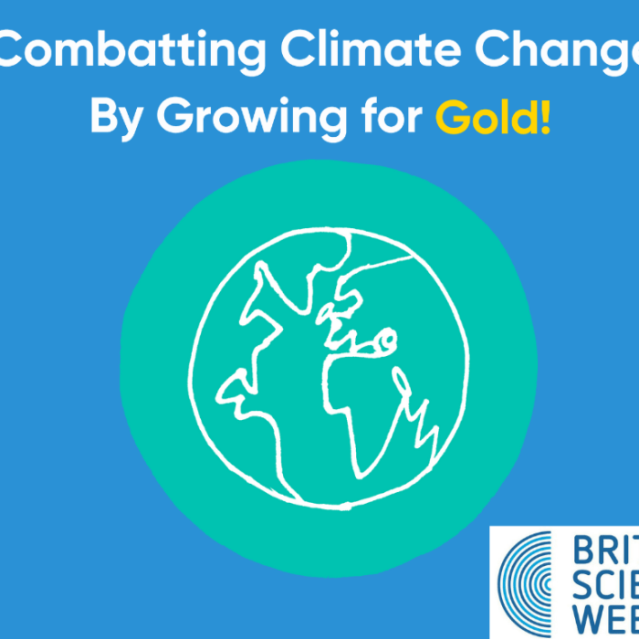 British Science Week 2022 – Combatting Climate Change – By Growing for Gold!