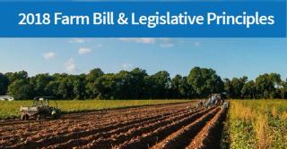 USDA farm bill principles