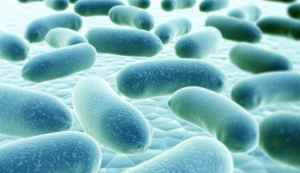 Legionella - Association of State Drinking Water Administrators
