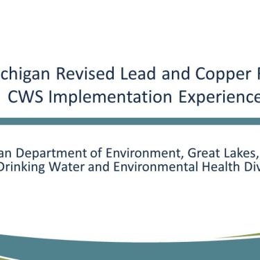 The Michigan LCR Experience: 5th Liter Sampling and Lead Service Lines