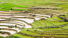 Minority community in Sapa, Northern Vietnam