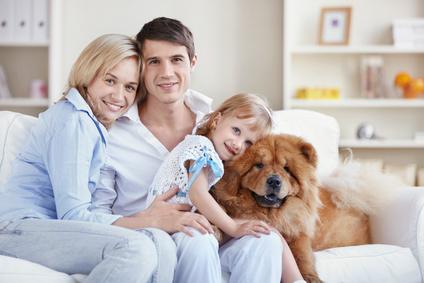 ¿Es obligatorio un seguro para tu mascota?