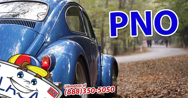 seguro de auto y casa California