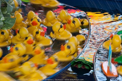 Yellow Rubber Ducks at the Exton Square Mall Spring Carnival