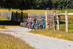 Mennonite School parking lot