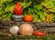 A gourd collection