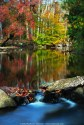 Creek Rd Tone Map 072 - The Fall colors along Creek Rd in Chester County PA.