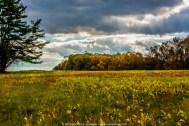 Weather Clouds 024 - Peacedale Preserve