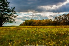Weather Clouds 024 - Peacedale Preserve
