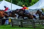 Radnor Hunt Races 236