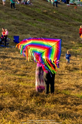 Colorful Kite Flying 006