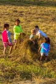 Children of the Hay 020
