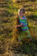 Children of the Hay 023