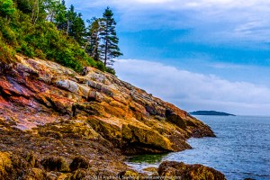 Sand Beach in Acadia National Park 044